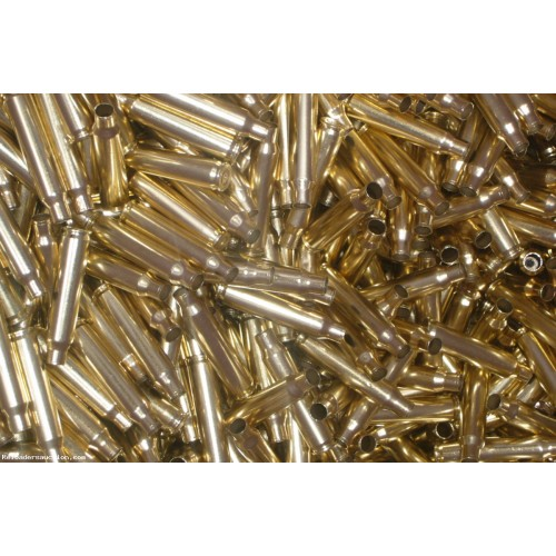 5.56mm military polished brass